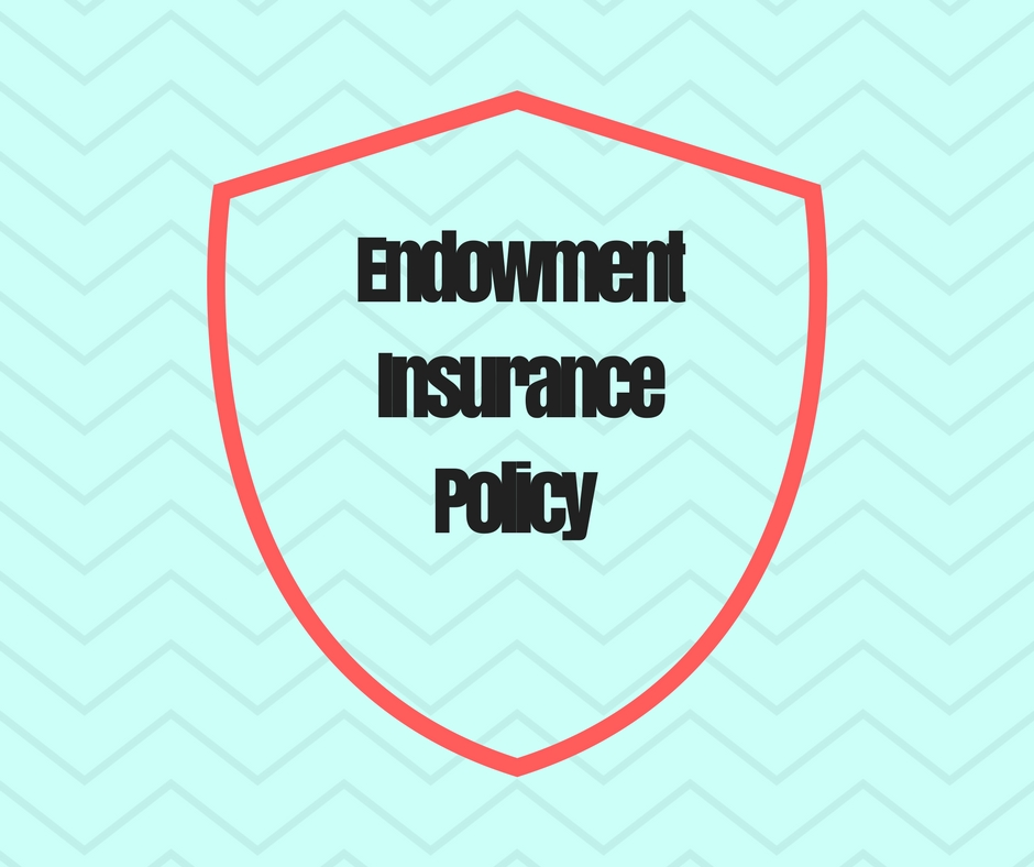 Endowment Insurance Policy