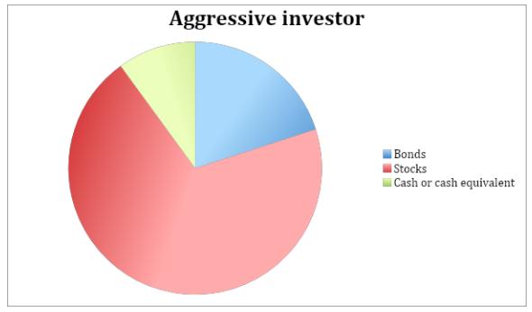 Aggressive Investor