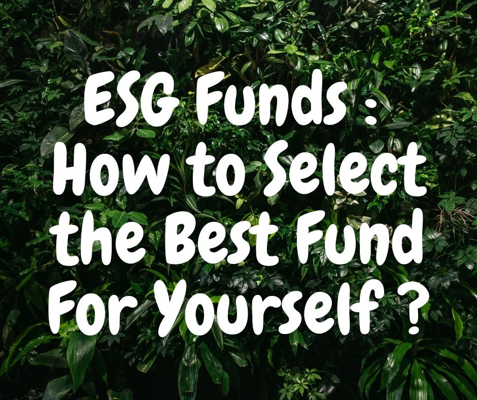ESG Funds : How to Select the Best Fund For Yourself ?
