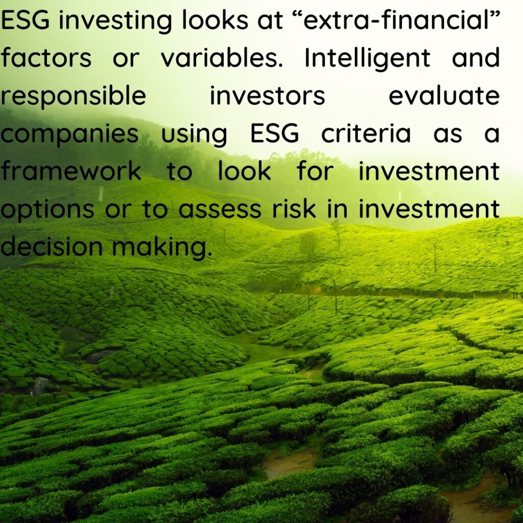 Investing in ESG funds